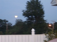 Heart shaped moon
